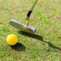 Choosing the Best Ping Putter